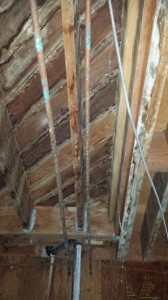 Do I need mold tests during my inspection?