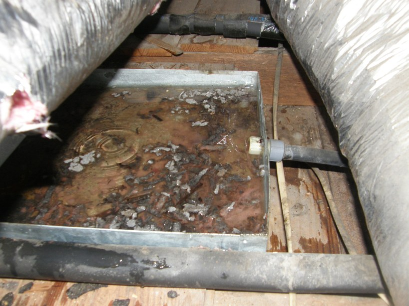 Is Your Air Conditioning Making You Sick Sos Environmental Llc